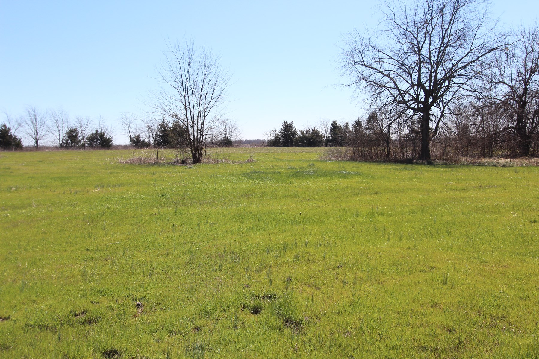 Country Land Property For Sale Paris Texas