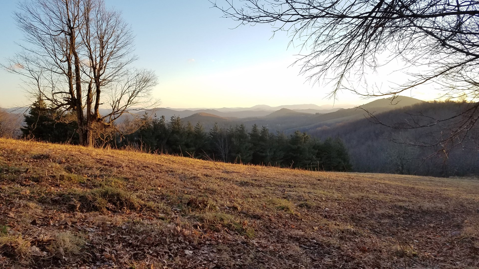 Large Acreage Tract Close to Jefferson National Forest