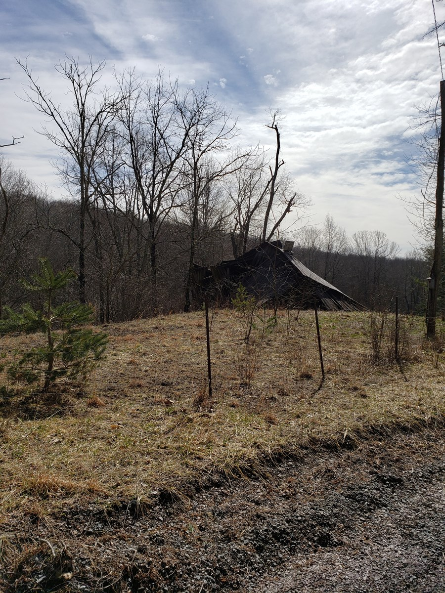 Buildable, small acreage tract Close to Jefferson National