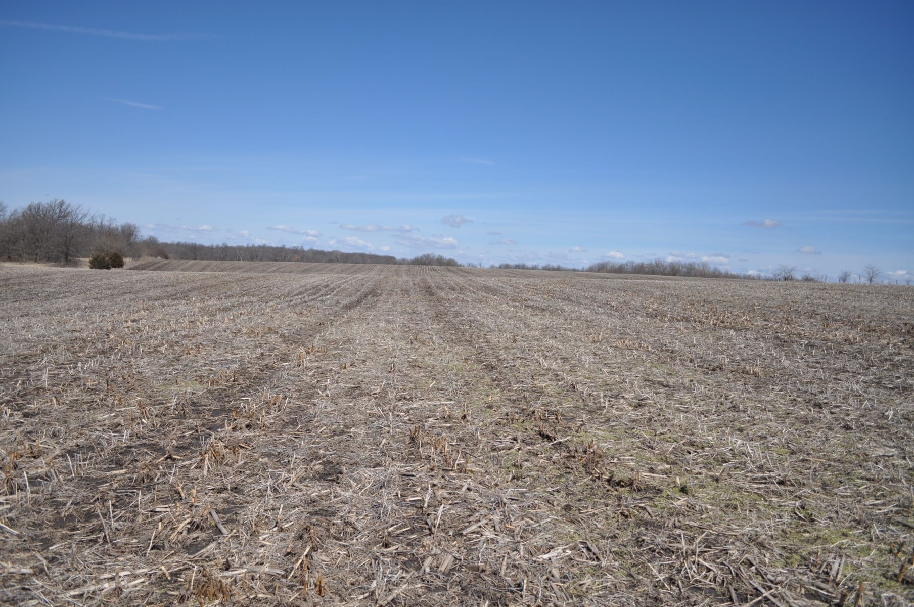High Tillable Small Acreage Row Crop Farm Gentry County