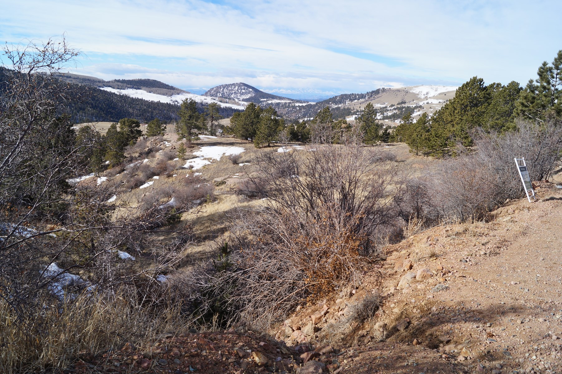 Land for Sale in Victor, CO