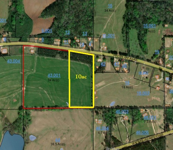 10 ACRE PAVED ROAD FRONTAGE LAND FOR SALE, CHANCELLOR, AL