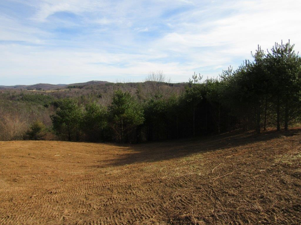 Unrestricted Land for Sale in Indian Valley VA