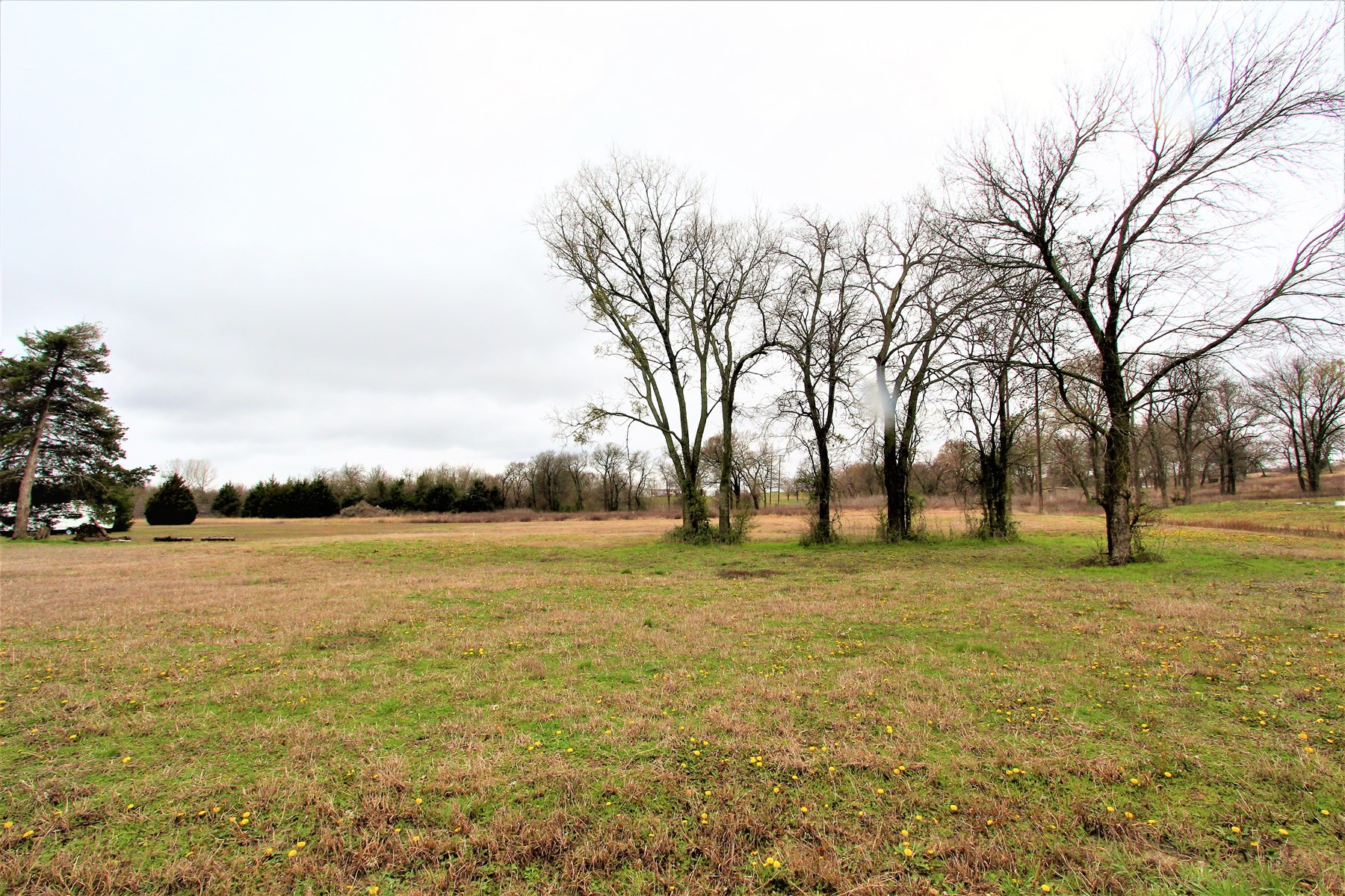 Country Land Property For Sale Honey Grove Texas