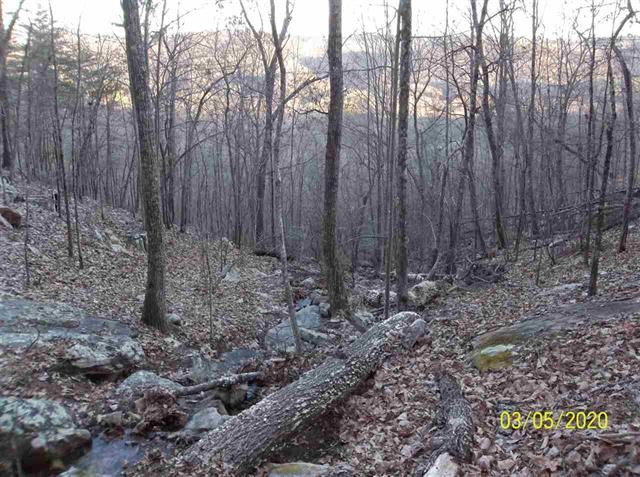 East Tennessee Hunting Property for Sale Hawkins County TN