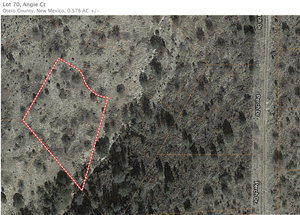 NEW MEXICO HUNTING LAND FOR SALE.