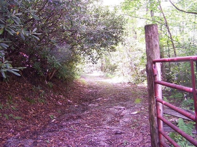 Secluded Tract with easy access in Blue Ridge Mountains