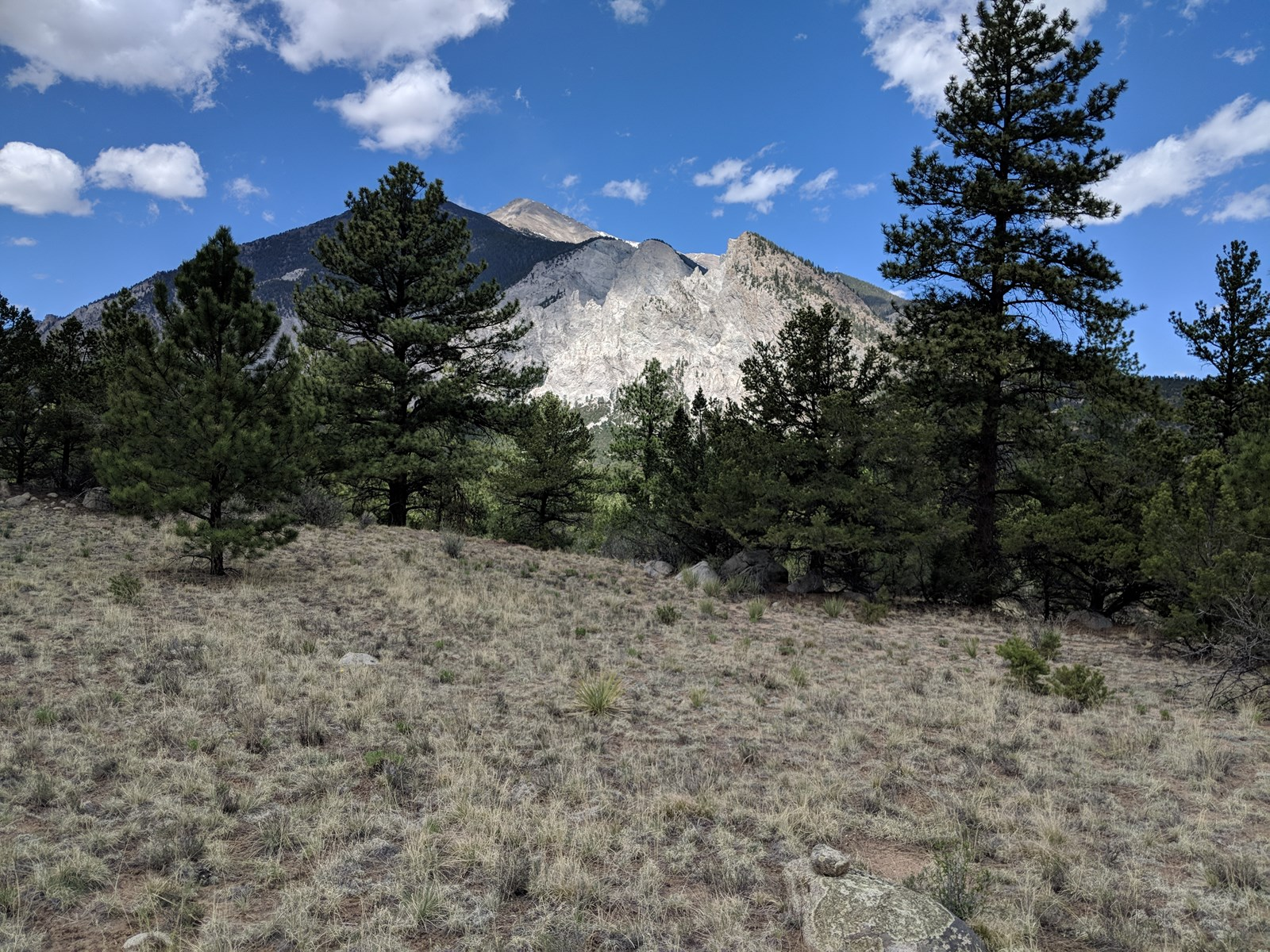 Mt. Princeton Views Colorado Mountain Land For Sale