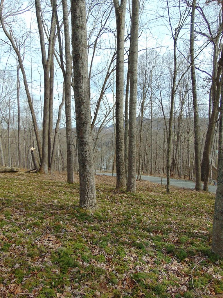 Building Lot 5 Acres +/- Common Area on the New River