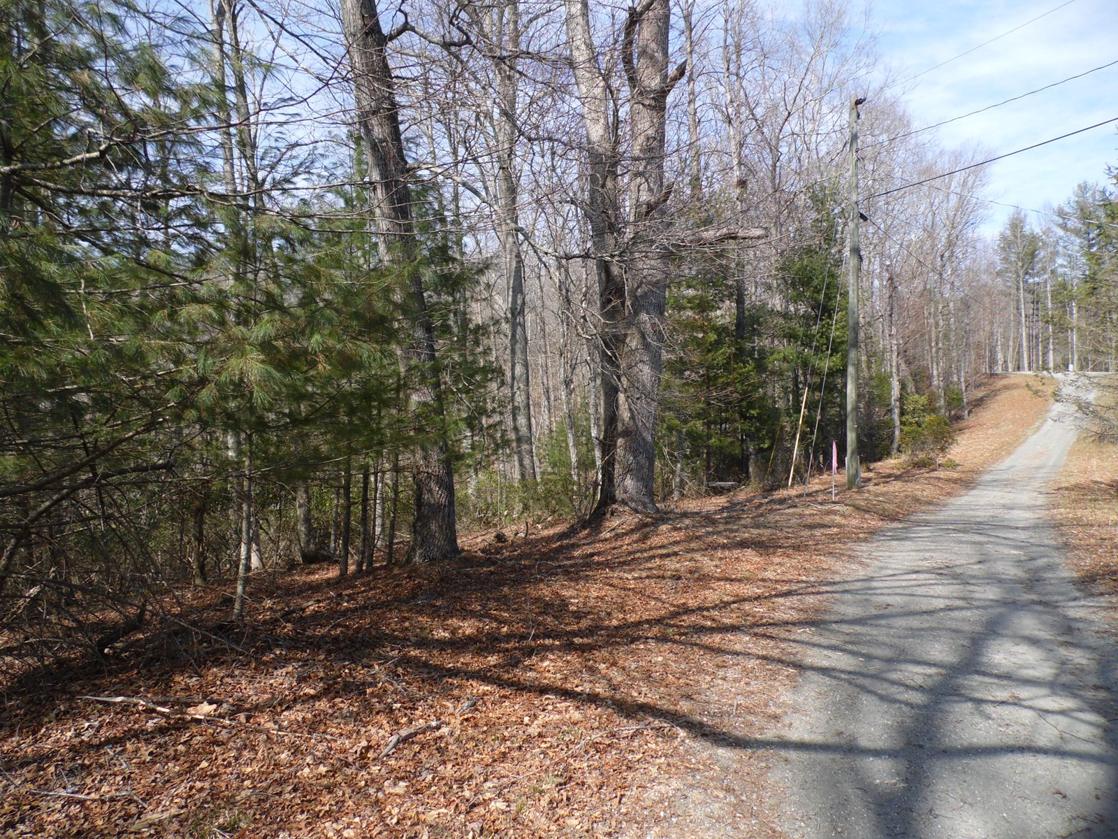 Wooded building lot with Common Area on New River