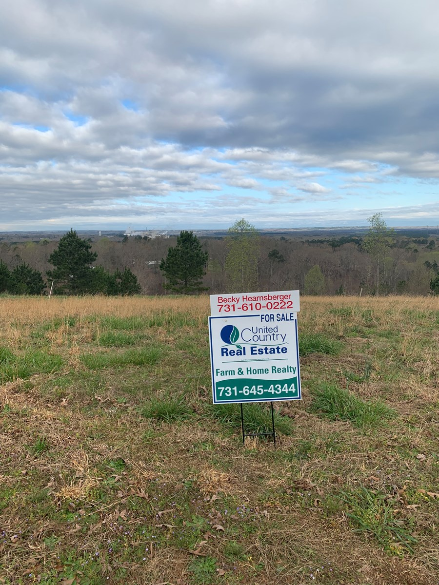 Selmer Tennessee Real Estate - Country Homes, Farms, Land
