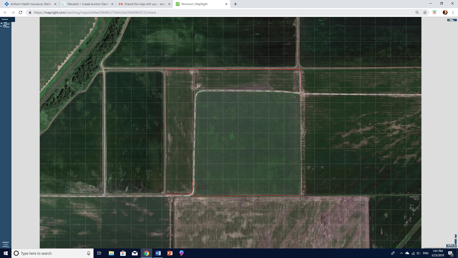 67 +/- Acres for Sale in Pemiscot County, Missouri