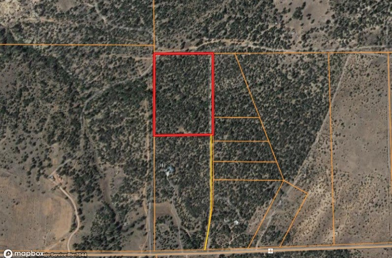 20 Acres of Land for Sale in Vanderwagen, New Mexico