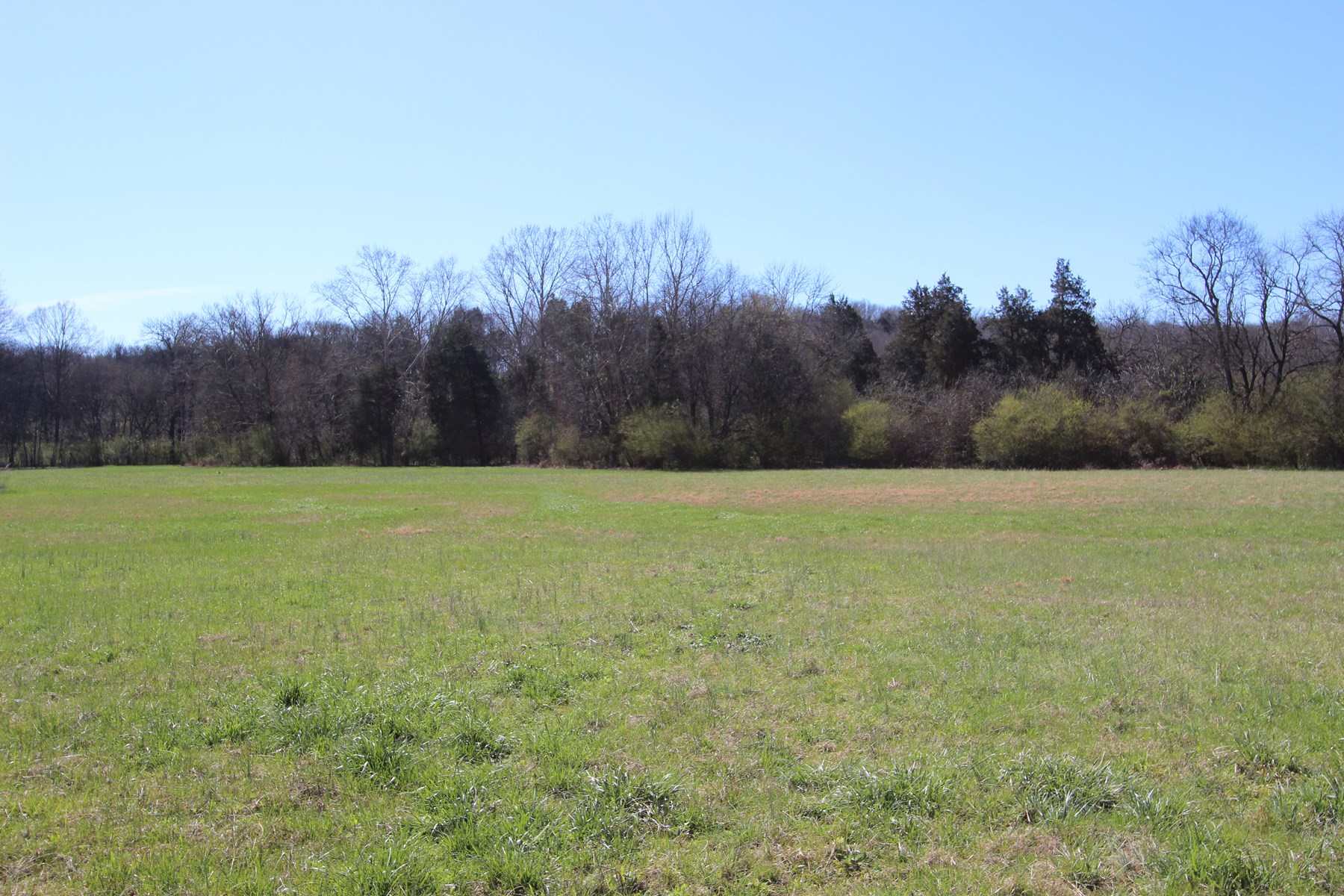 Beautiful level acreage with Creek, in Maury County, TN