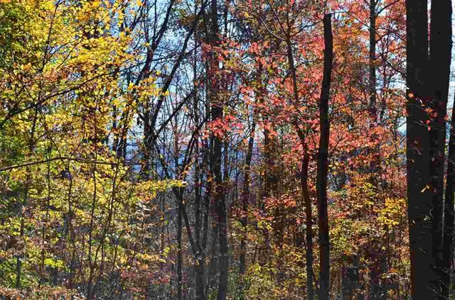 57.7 Acres Mountain Property in Sneedville, TN