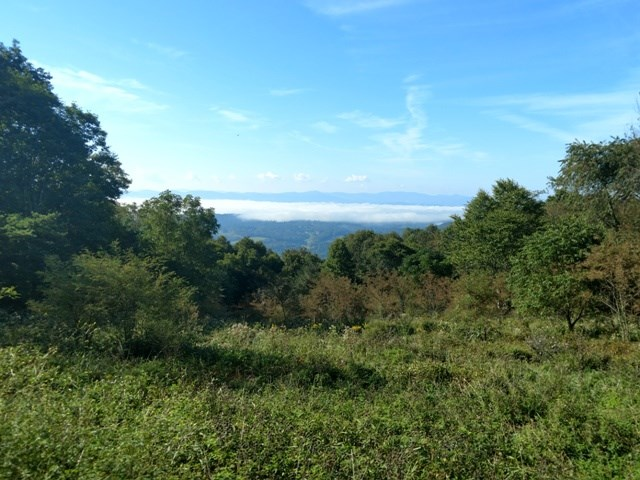 Views from Southern slope in Blue Ridge Mountains