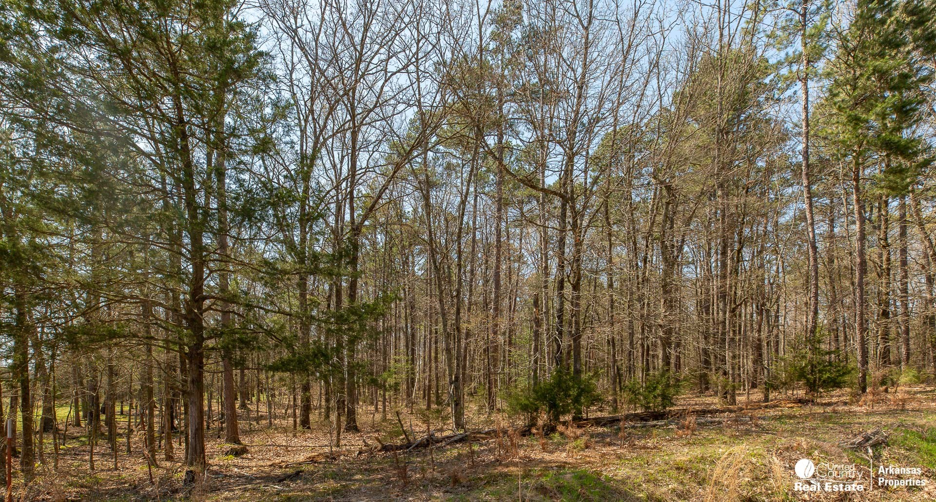 Wooded acreage just outside city limits