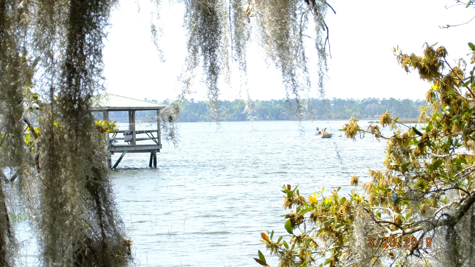 Deep Water Lot with Dock For Sale in Seabrook Point, SC