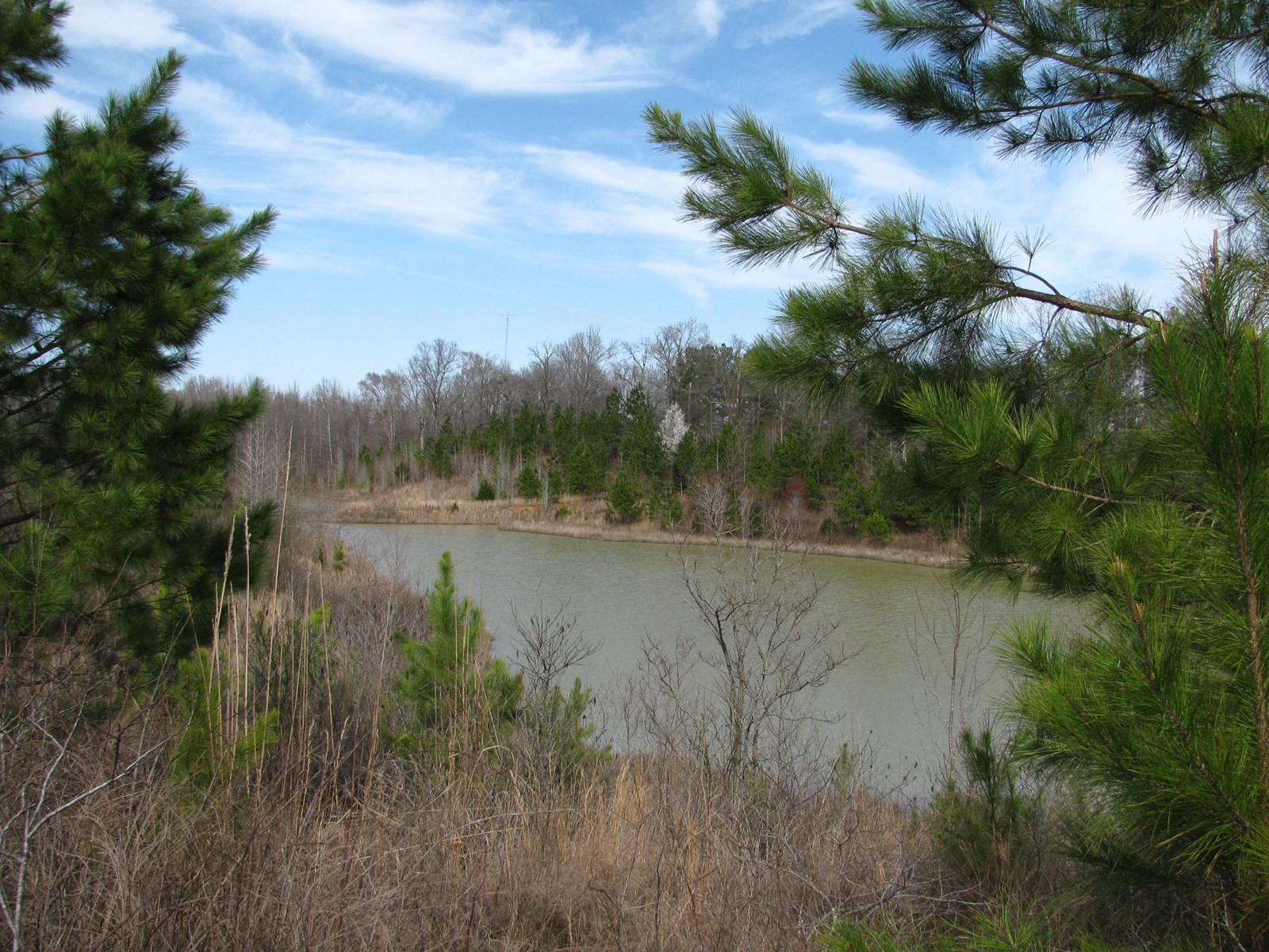 TENNESSEE LAND FOR SALE WITH 7 PONDS & CREEK FRONTAGE