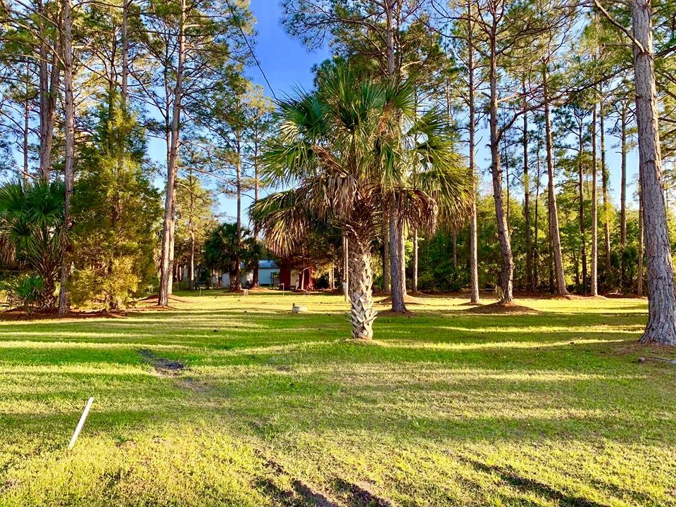 TWO LOTS IN SUWANNEE FLORIDA W/ UTILTIES FOR SALE!
