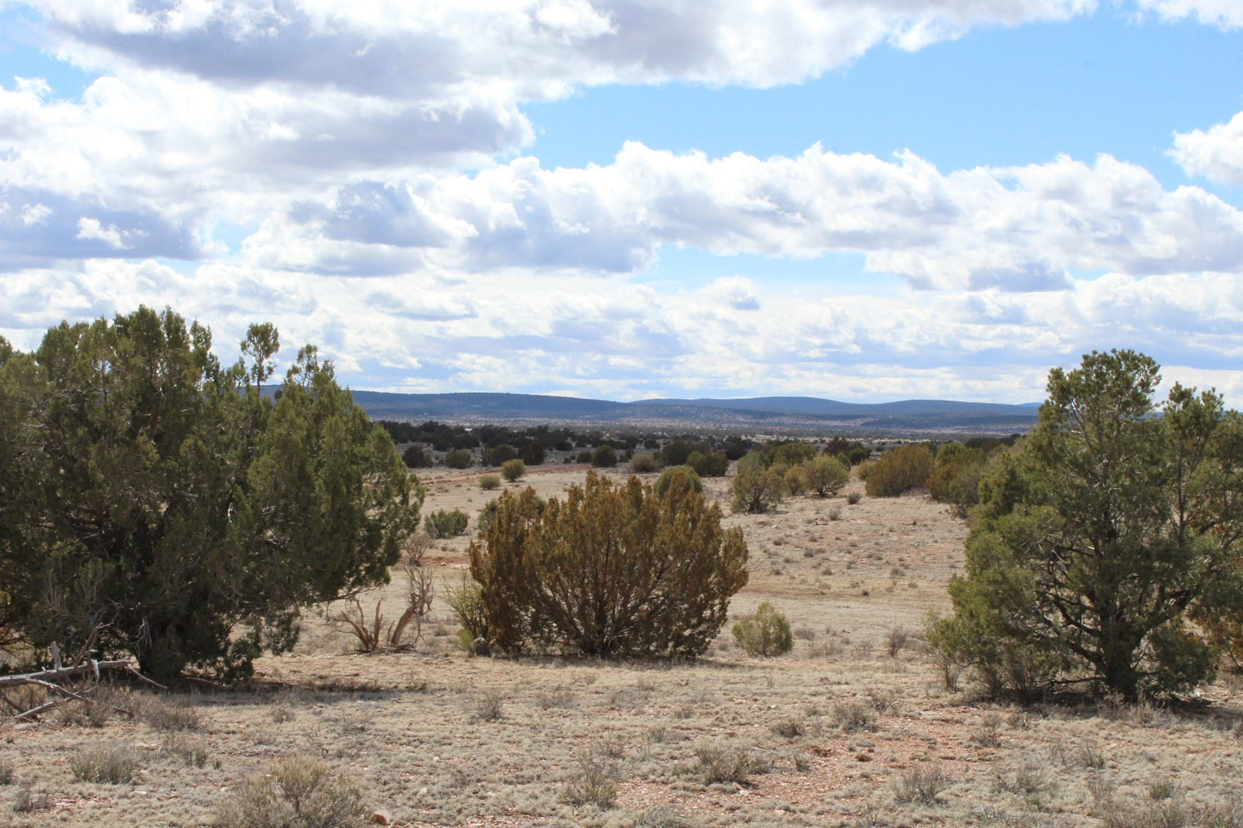 10 Affordable Acres in Northern AZ!