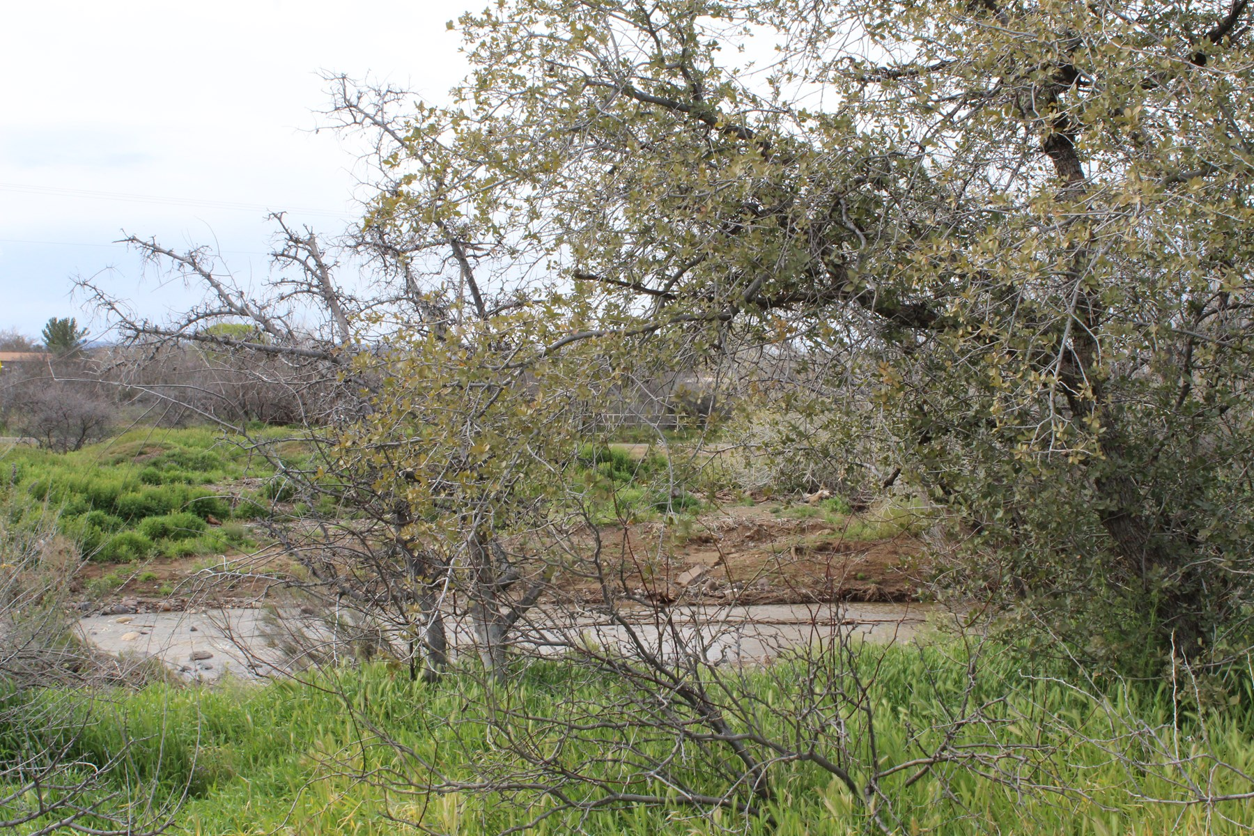 Creekside Lot for Sale in Spring Valley, AZ