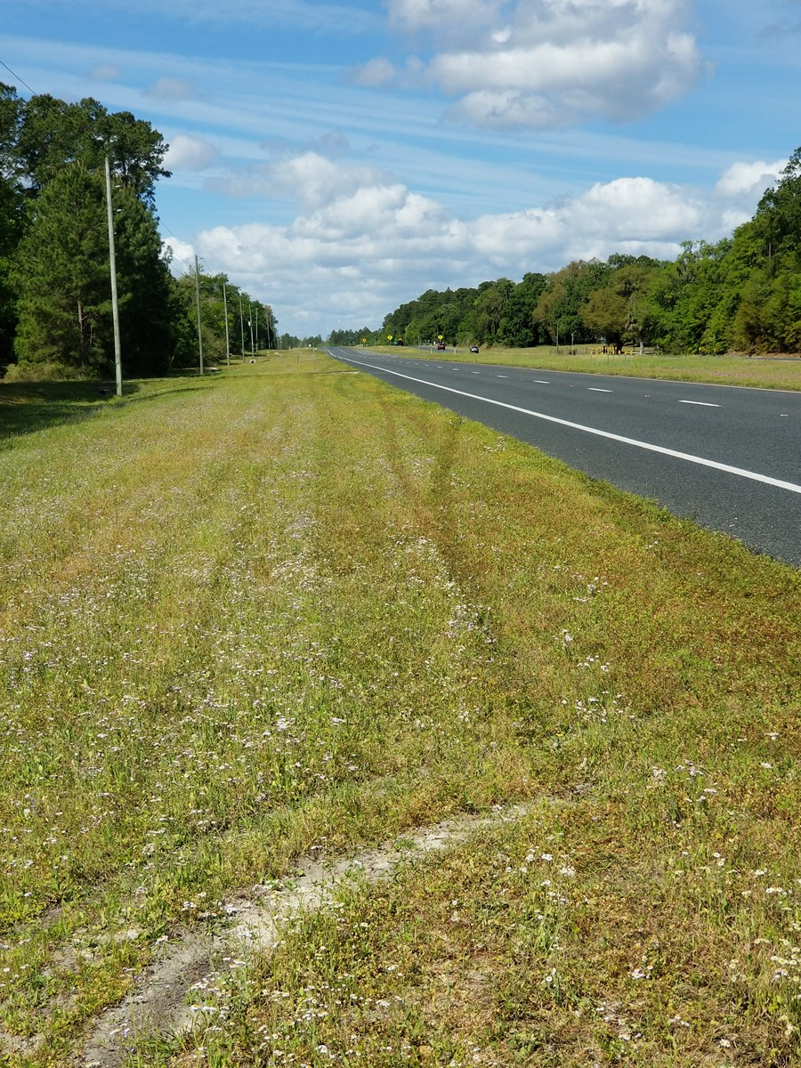 5 Acres vacant land in North Central Florida