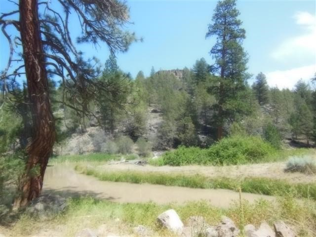 5 +/- Acres  w/Rattlesnake Creek Running Through It