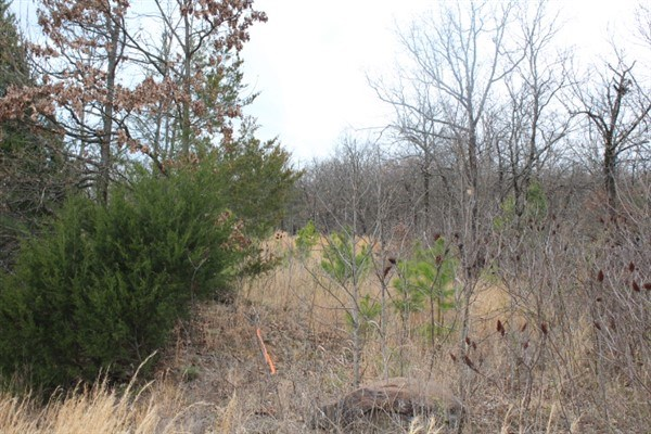 17.18 Acre Home Site Close to Poteau
