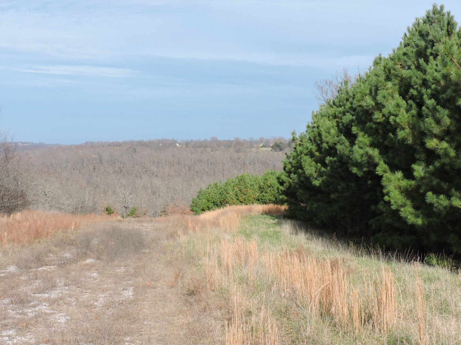 Building Lot 3.44 ac, Compton Ar Newton County.