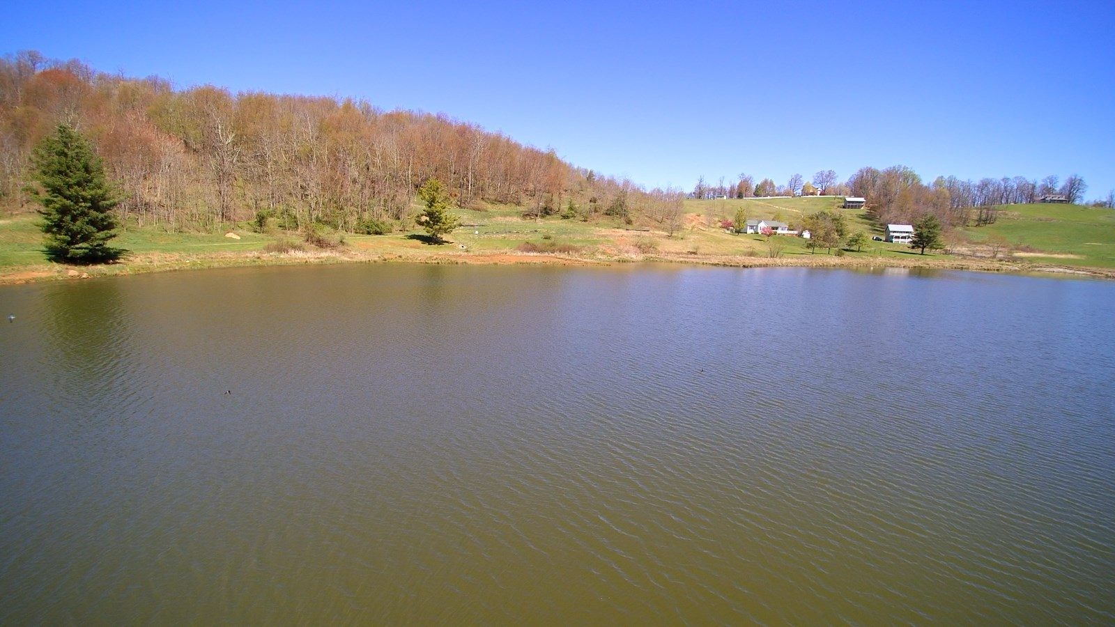 Buildable, Waterfront Tract in Blue Ridge Mountains.