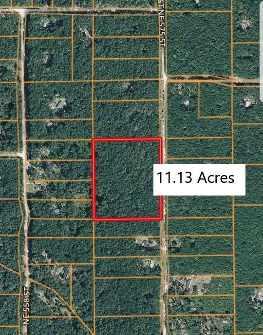LAND IN OLD TOWN FLORIDA (DIXIE COUNTY)