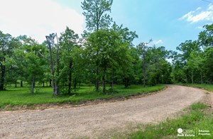 32.25 ACRES OF MOUNTAIN LAND FOR SALE IN POLK COUNTY, AR