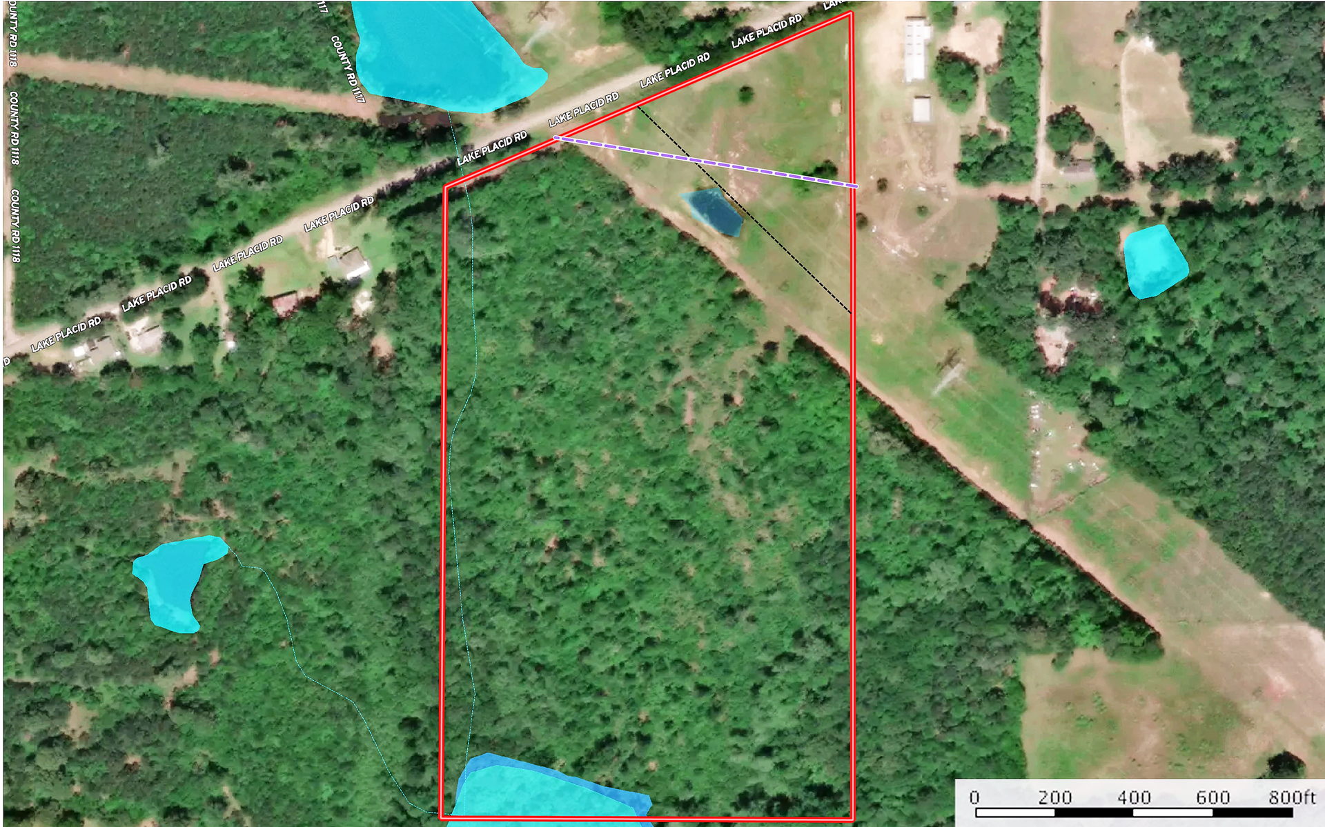 Land For Sale In East Texas Near Tyler Wooded Creek Hunting
