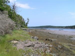 Coastal Cove Land For Sale in Trescott TWP, Maine