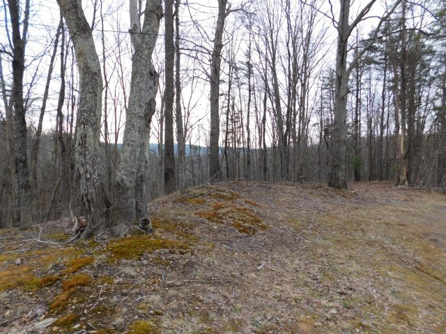 WV Land For Sale - Delray, WV - Hampshire County