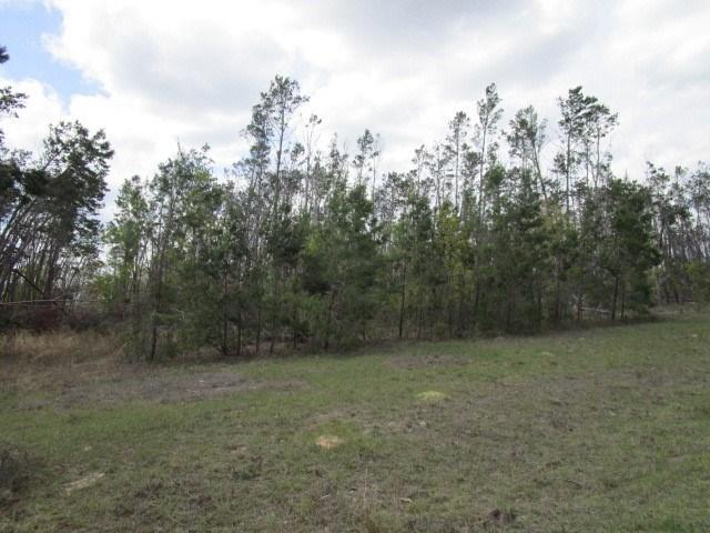 10 acre tract in gated subdivision in Bristol FL