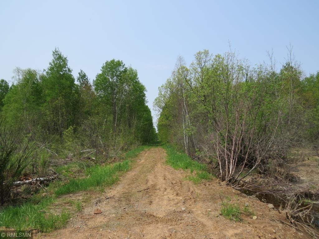 40 Acres Hunting Land For Sale by Public Land Aitkin County
