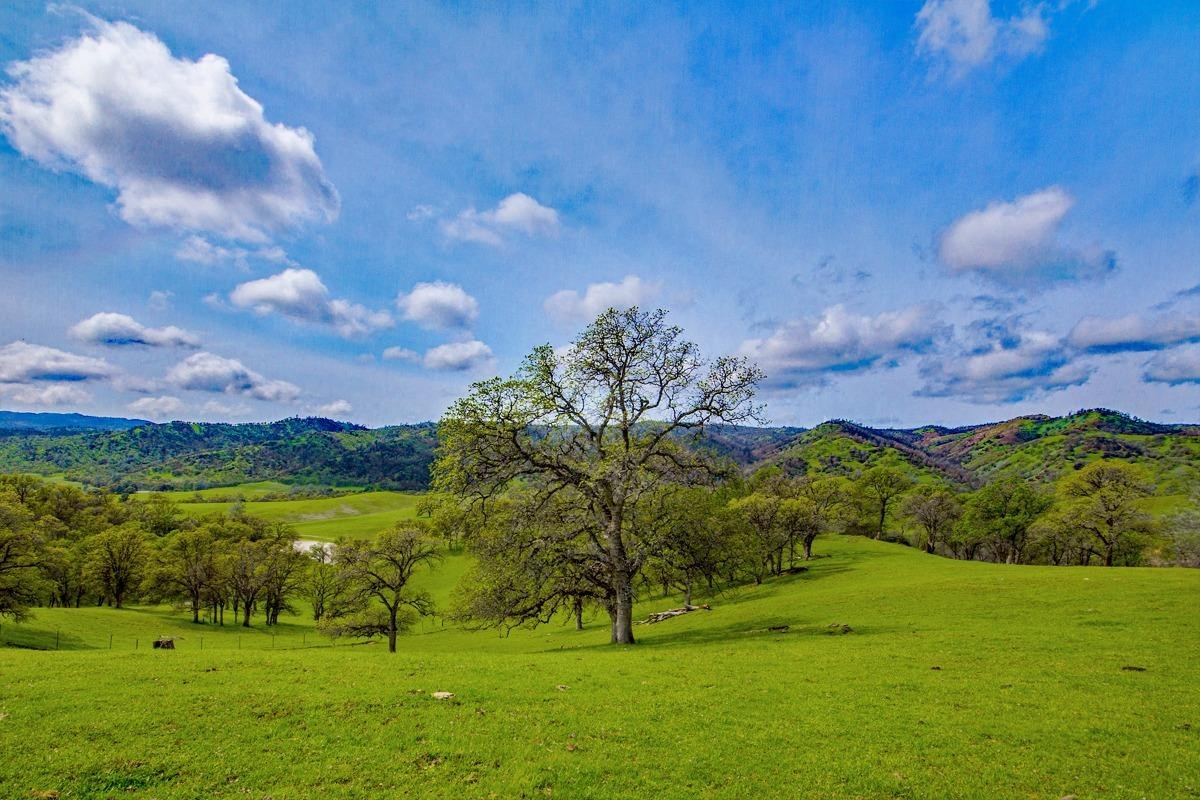 Northern California Land for Sale in Western Yolo County