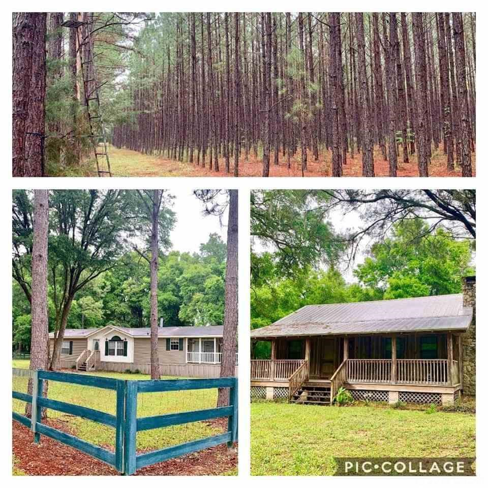 TIMBER LAND FOR SALE-HUNTING-2 HOMES-61 ACRES, Alachua Co