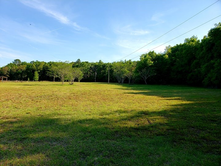 LAND FOR SALE LEVY COUNTY FLORIDA 4.32 ACRES
