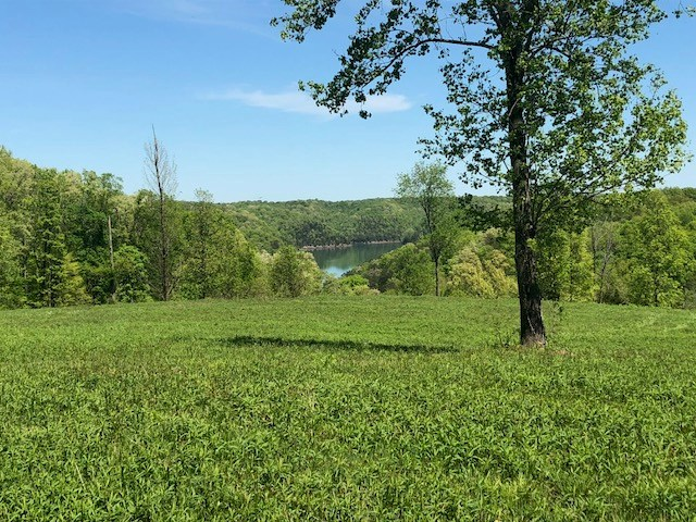 Land for sale close to Rowena Marina, Albany, Kentucky