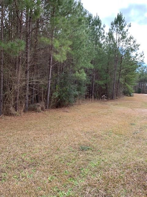 2.925 Acres Lot #5 North Pike Schools Dist Pike County MS