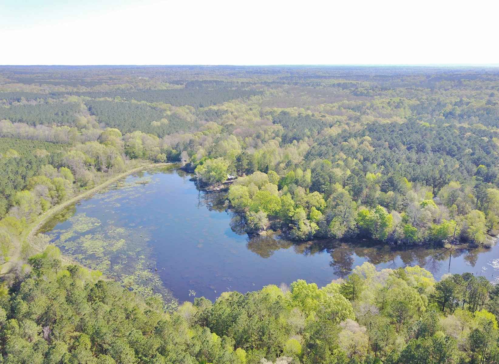 228 Acres, 2 Lodges & Lake for Sale, Wilkinson Co, MS