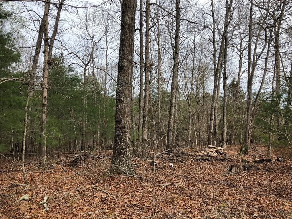 Jasper, GA  - Pickens County 2.2 Acres