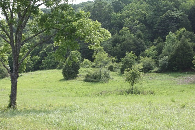Rural Acreage For Sale In Abingdon VA