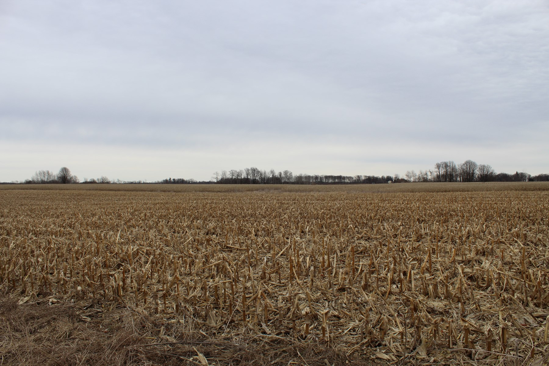 Mille Lacs County Tillable Land For Sale