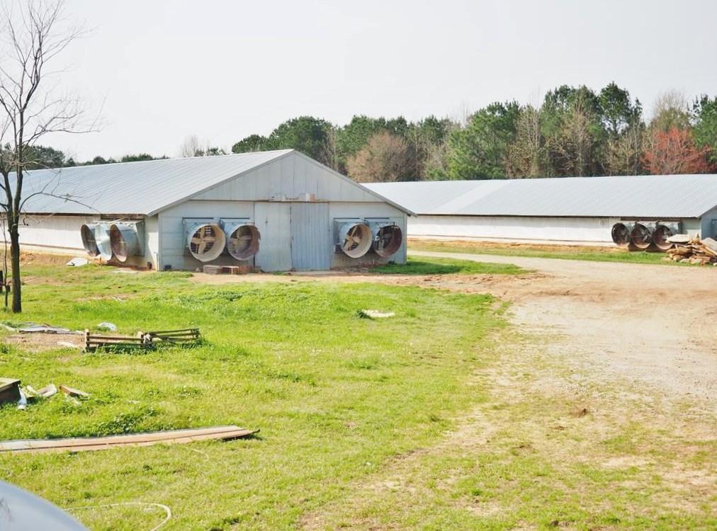 2 House Breeder Poultry Farm, Mobile Home, Philadelphia, MS
