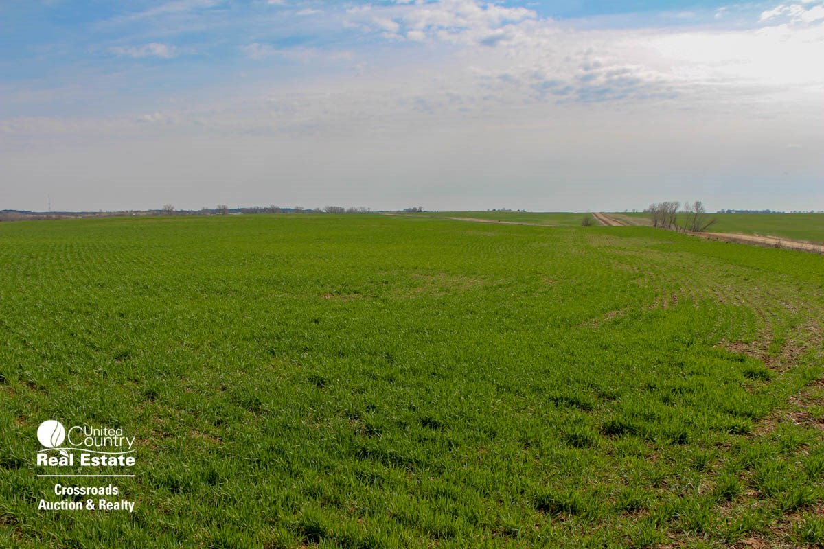 288± Acres of Pasture & Farmland in Southern Ottawa County, Kansas For Sale at Auction