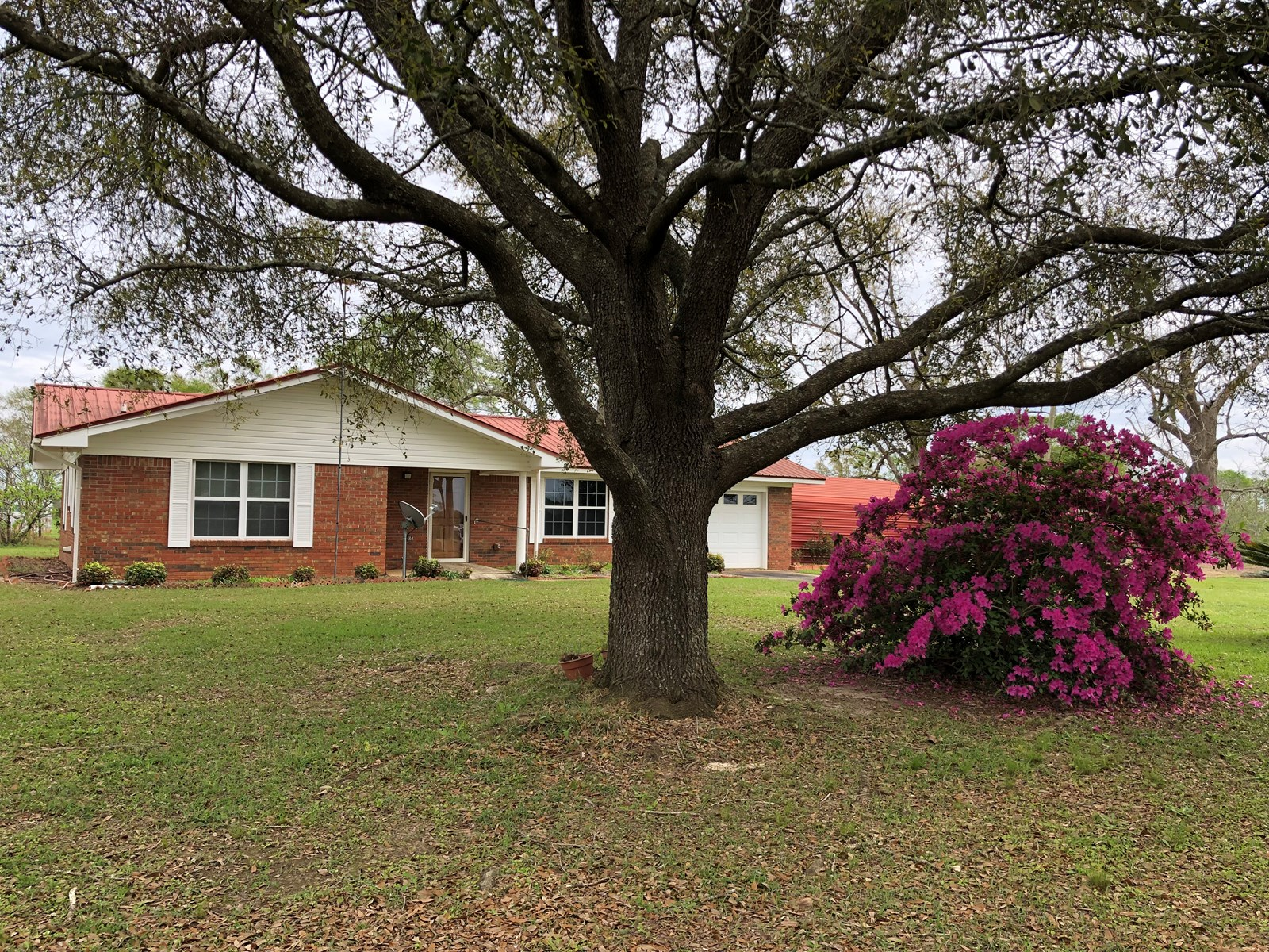 3B/2B BRICK HOME ON 3 ACRES FOR SALE SLOCOMB, AL CO RD 49 S